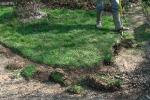 Обработка краёв газона