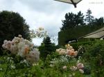 Путешествия по паркам и розариям :: Северный сад