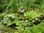 Путешествия по паркам и розариям :: Водный сад