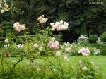 Северный сад
