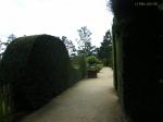 Путешествия по паркам и розариям :: Южный сад, почвопокровные розы в