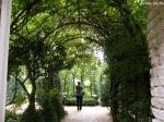 Путешествия по паркам и розариям :: арка  c лианами 'Neige d'Avril',