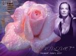 Carol Bouquet