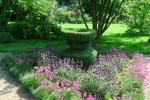 Topiary :: Вазон в мае